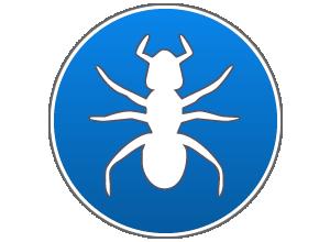 disinfestazione da formiche