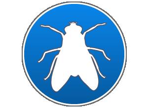 disinfestazione da mosche