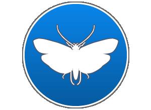 disinfestazione da insetti delle derrate